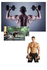 ¿Quien es sascha fitness?